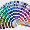 About the Pantone Color
